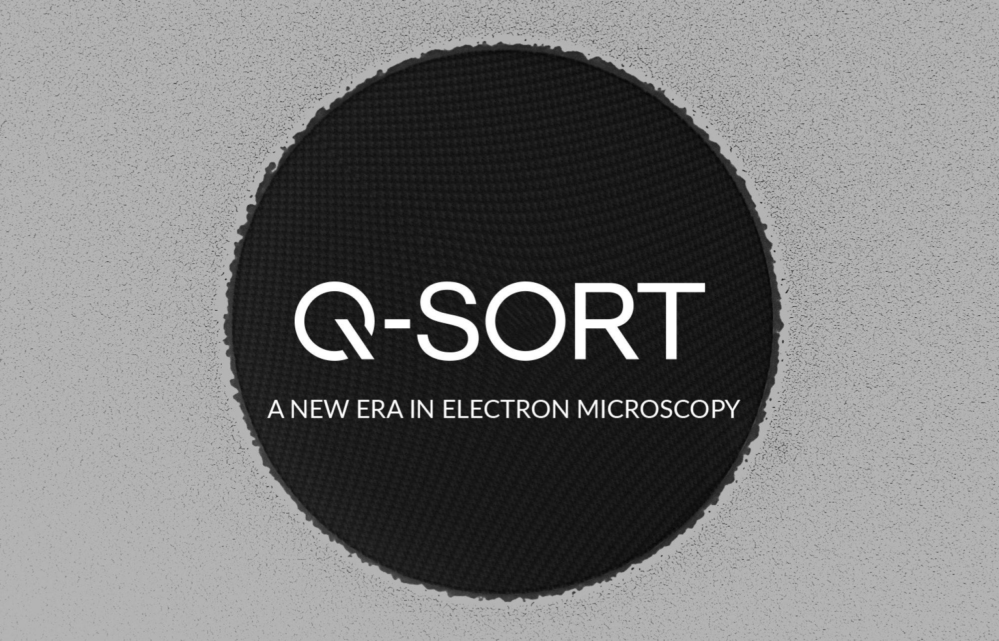 Q-SORT
